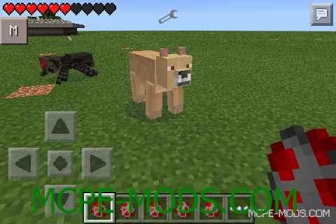 Big Cats Mod 0.10.5/0.10.4