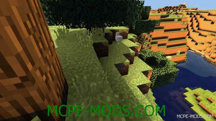 D.D BR Shaders 0.11.1