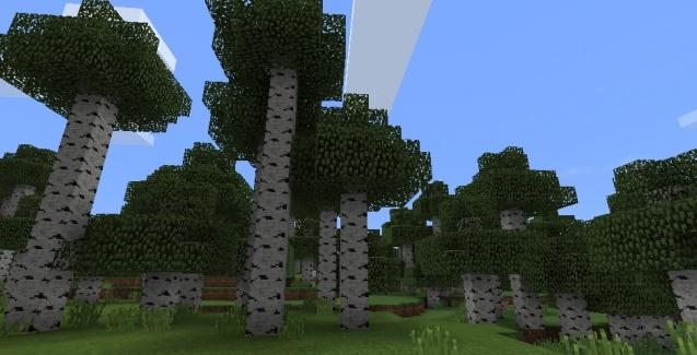 Сид Редкий высокий берёзовый лес 1.0, 0.17.0, 0.17.1