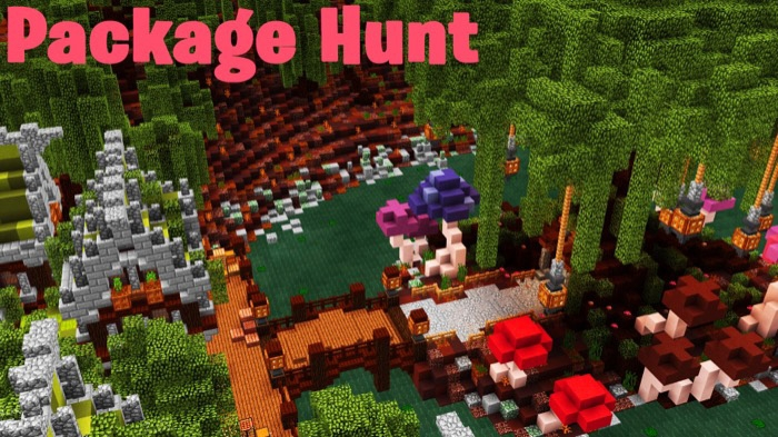Карта SG Package Hunt 1 [Mини-игра] [Головоломки]